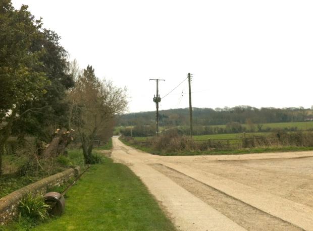 view from charleston